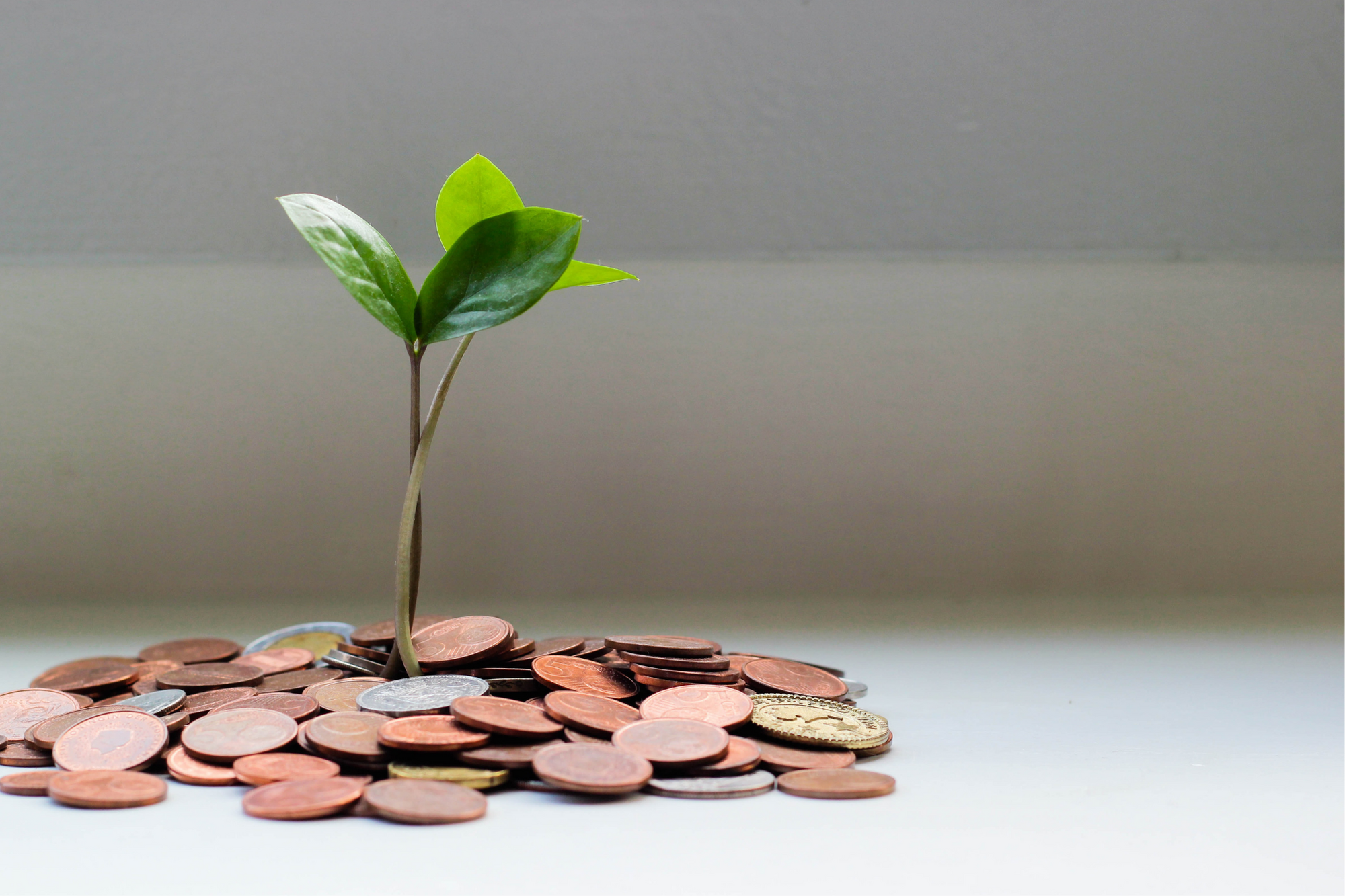 3 Ways to Improve Your Financial Performance